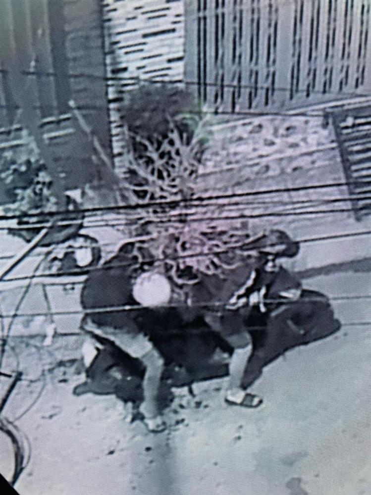 Hải Băng công khai hình ảnh trộm cuỗm mất cây mai gần 100 triệu-4
