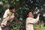 Hoài Linh giới thiệu vườn cây bạc tỷ trong nhà thờ Tổ