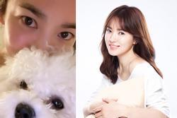 Động thái của Song Hye Kyo trong ngày Valentine