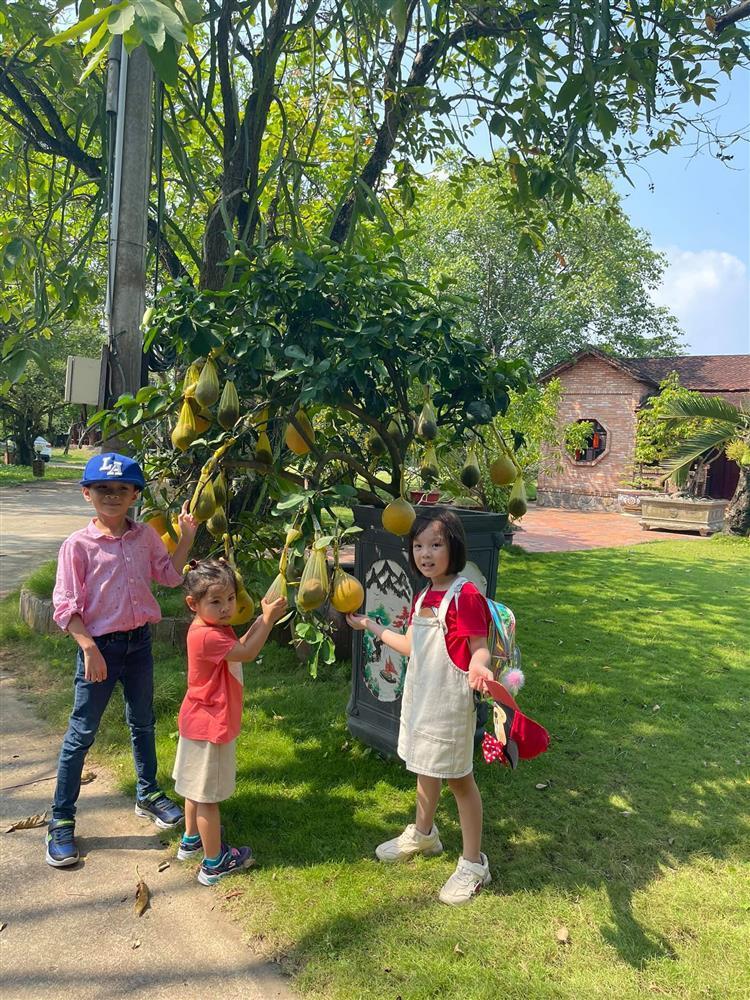 Những ngày về Việt Nam của con trai Ngô Kiến Huy-15