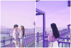 Hòn đảo màu tím độc đáo ở Hàn Quốc