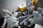 Lý do Việt Nam xét nghiệm Covid-19 rộng trong cộng đồng