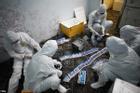 Hải Dương phát sinh ổ dịch mới với 6 ca mắc Covid-19