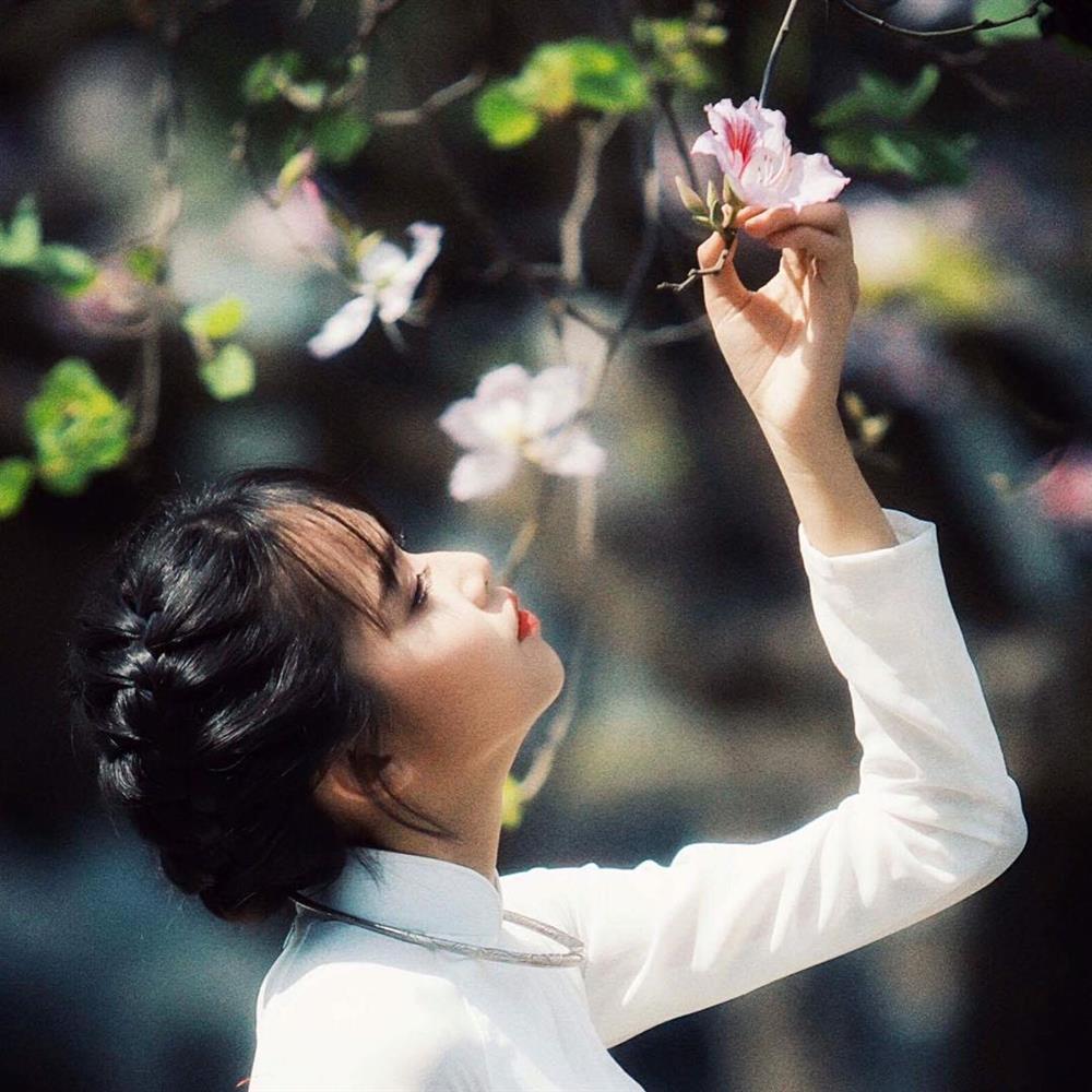 Mê mẩn sắc hoa đẹp đang nở rộ, dân tình chỉ muốn check-in sống ảo-5