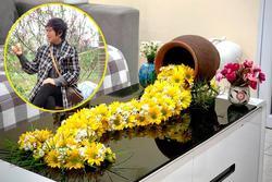 Phải lòng những 'suối hoa' của mẹ Hà Nội, chị em thi nhau vào học hỏi