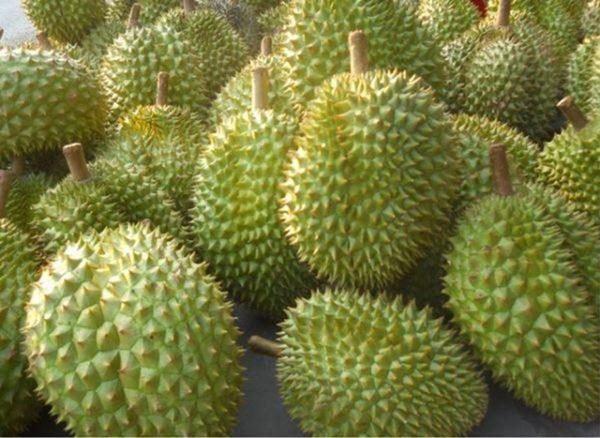Có hai loại quả hưng thịnh trong phong thủy, Rằm tháng Giêng nên cúng-4