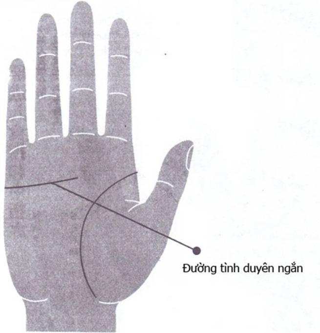 Nhìn vào bàn tay thấy 4 nét này bảo sao quý cô đơn chiếc cả đời-2