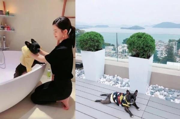 Văn Vịnh San tiết lộ mối quan hệ rạn nứt với Angela Baby-3