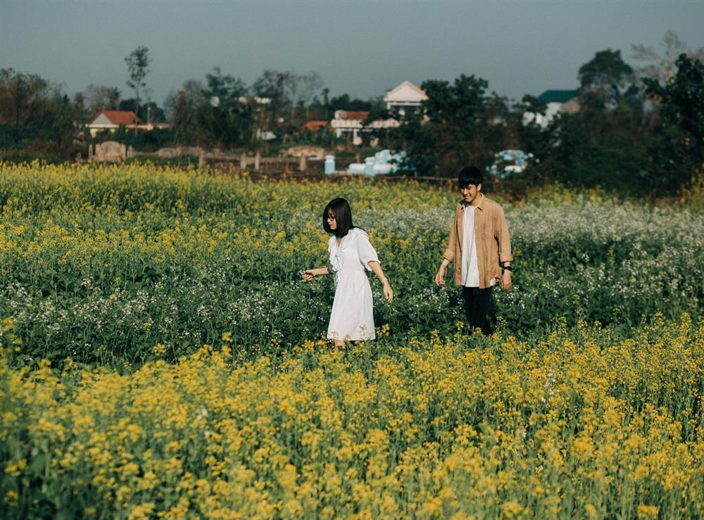 Vườn hoa cải thơ mộng ở Huế-1