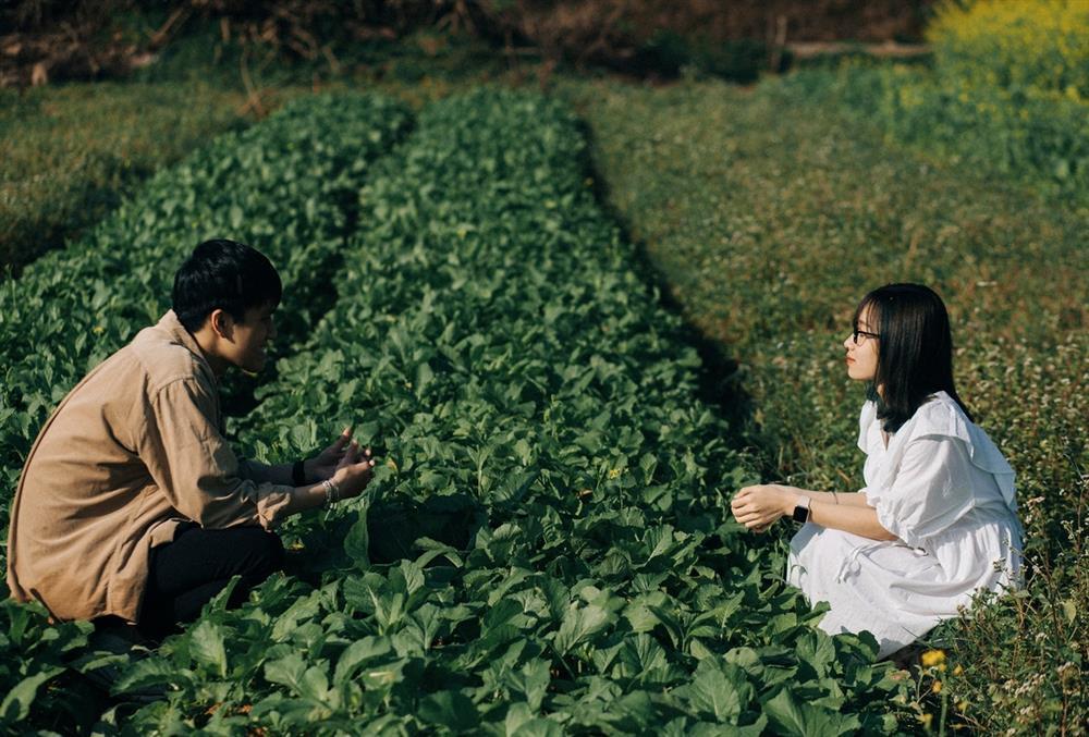 Vườn hoa cải thơ mộng ở Huế-5