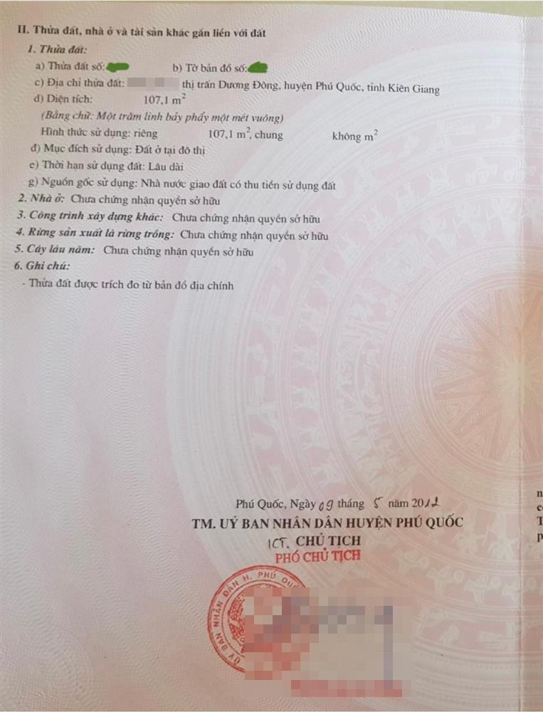 Vợ cũ Thành Trung gây ngạc nhiên khi liên tục tậu nhà đất-4
