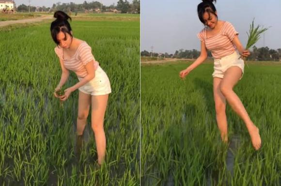 Đi dặm lúa để vòng 1 như rơi ra ngoài, bà Tưng ăn đá tảng-2