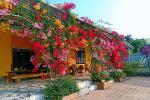 Đảo hoa Kon Trang Long Loi - Có nơi nào đẹp hơn?-8