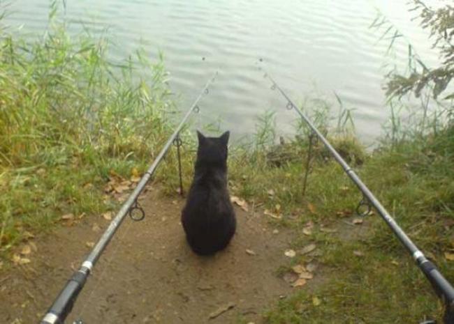 Những màn câu cá gây choáng, chỉ có cần thủ thực thụ mới nghĩ ra-10