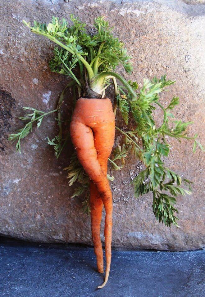 Bộ sưu tập những củ cà rốt có đôi chân dài miên man khiến hội chị em ao ước-1