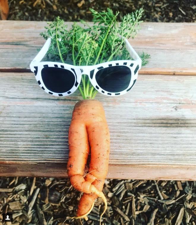 Bộ sưu tập những củ cà rốt có đôi chân dài miên man khiến hội chị em ao ước-7