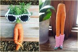 Bộ sưu tập những củ cà rốt có 'đôi chân dài' miên man khiến hội chị em ao ước