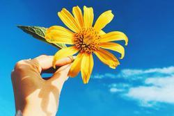 Người sinh vào tháng âm lịch này mang phúc khí dồi dào, từ tháng 3 gặp nhiều may mắn