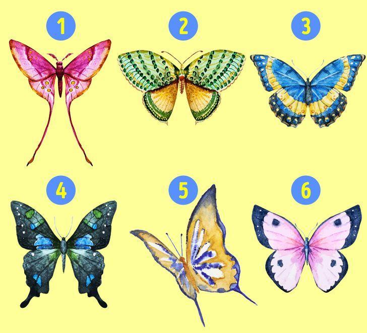 Con bướm bạn chọn sẽ tiết lộ những tính cách ẩn giấu bên trong con người bạn-1