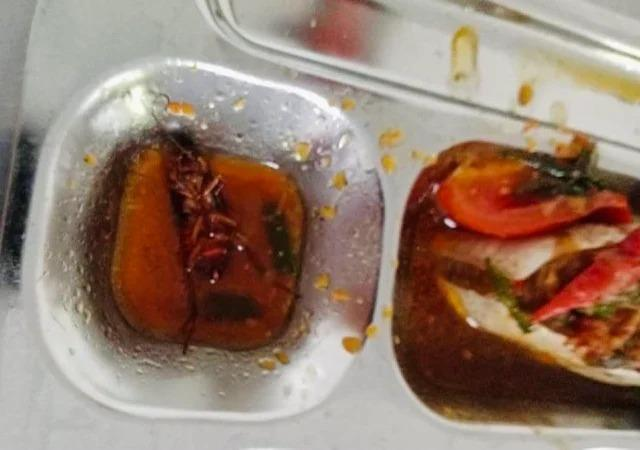 Mua cơm căng tin, học sinh kinh hãi phát hiện có gián trong thức ăn-1