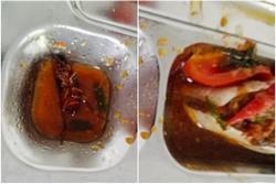 Mua cơm căng tin, học sinh kinh hãi phát hiện có gián trong thức ăn