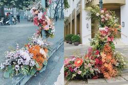 Spotlight ngày 8/3: Nhiều cột đèn Hà Nội 'nở hoa' khiến dân tình 'xỉu dọc, xỉu ngang'