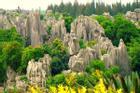 Rừng đá cao nguyên độc đáo ở Trung Quốc