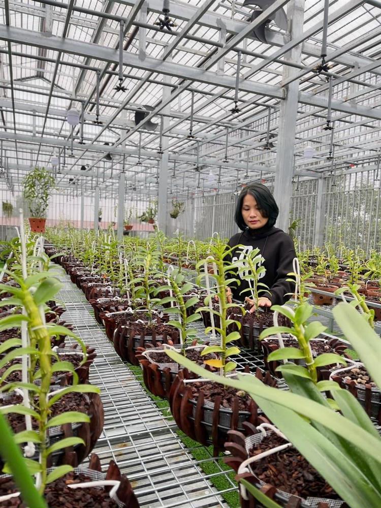 Vườn lan nghìn chậu của 'bóng hồng' 8X Bắc Ninh-1