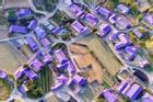 Hòn đảo màu tím hút khách du lịch ở Hàn Quốc