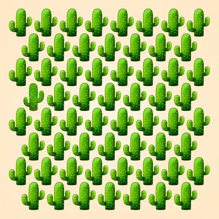Thử tài tinh mắt: Mất bao nhiêu giây để tìm ra điểm khác biệt trong bức hình này?-2