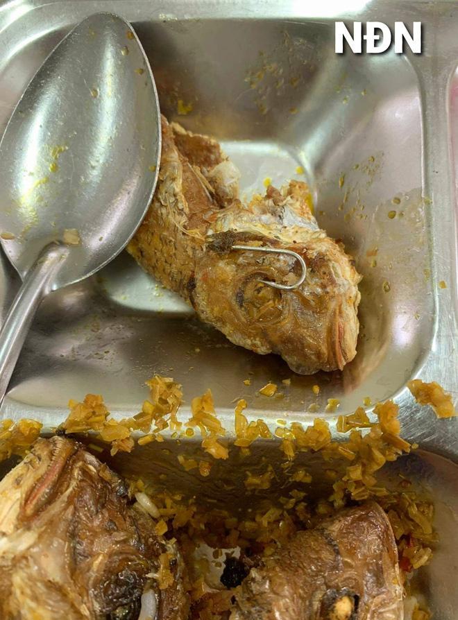 Ăn cơm trưa, hàng loạt công nhân thất kinh vì vật thể lạ sắc nhọn ở đĩa cá rán-1