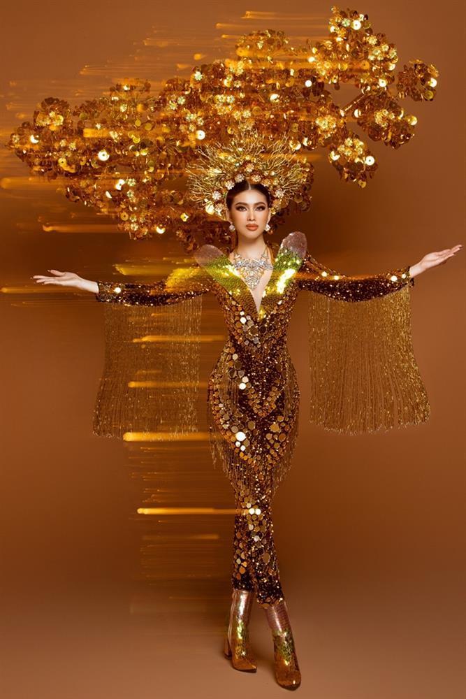 Toát mồ hôi Quốc phục khổng lồ của người đẹp Việt đi thi quốc tế-3