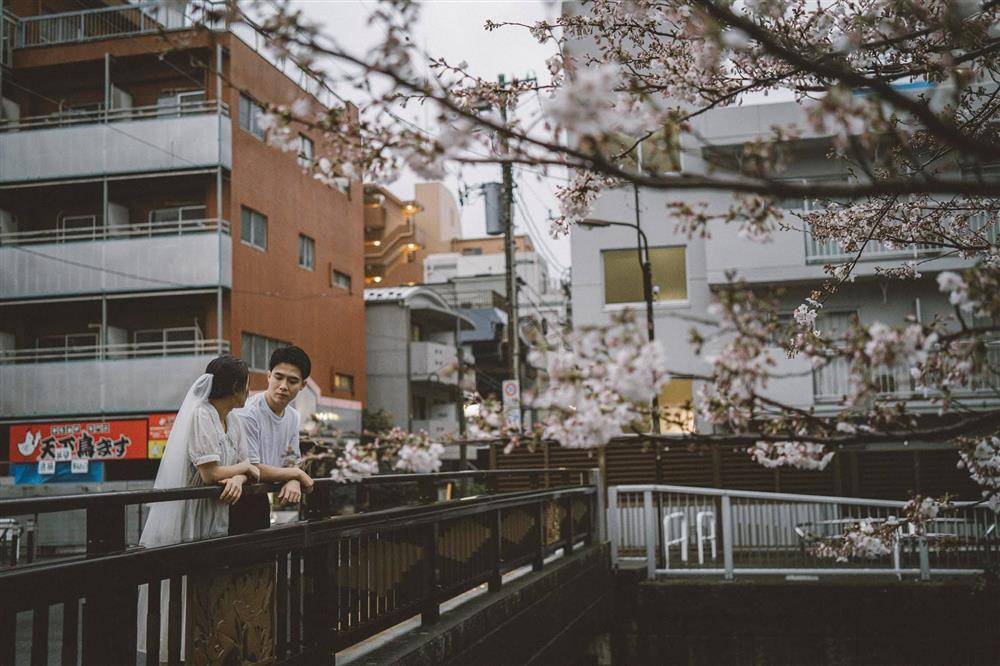 Cặp du học sinh Việt tại Tokyo chớp bộ ảnh cưới tuyệt đẹp dưới cơn mưa-7