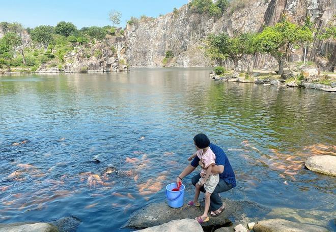 Đàn cá trê hàng nghìn con hút khách du lịch đến Thoại Sơn-3