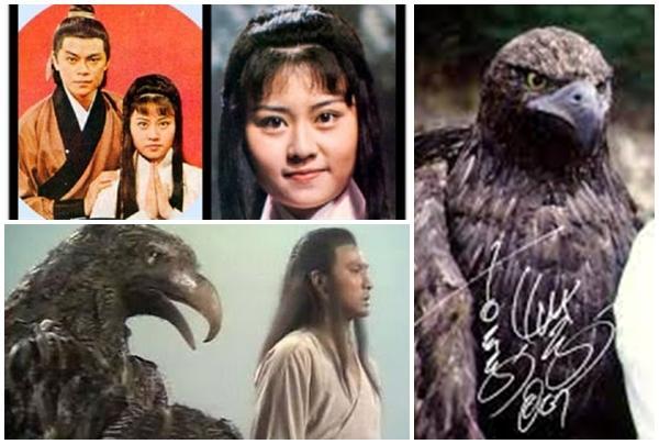 Phiên bản Tiểu Long Nữ khiến cả cố mẹ đẻ Kim Dung... phát ốm-2