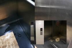 Kinh dị chung cư thủng trần tại Hà Nội: Cư dân tiểu tiện trong thang máy