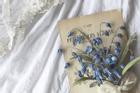 12 cung hoàng đạo Chủ nhật ngày 11/4/2021: Đã đến lúc Cự Giải cần nghỉ ngơi
