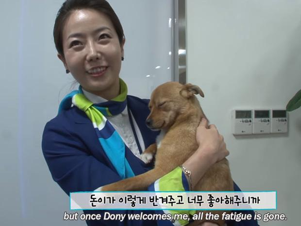 Chú chó mê gái khét tiếng ở sân bay Hàn Quốc-1