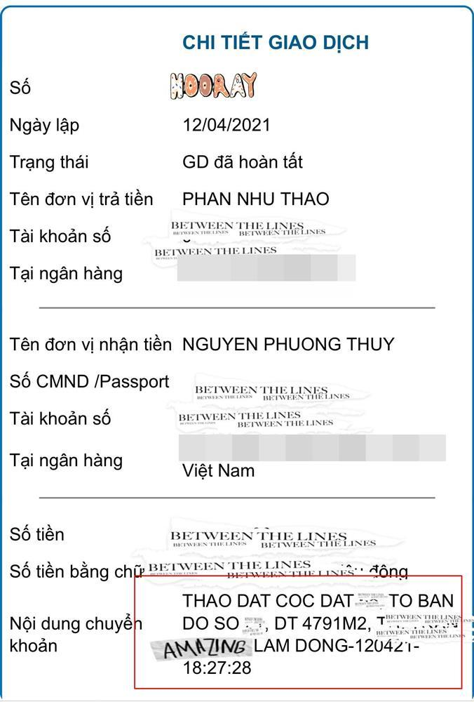Chồng đại gia tậu 5.000 m2 đất tặng Phan Như Thảo-2