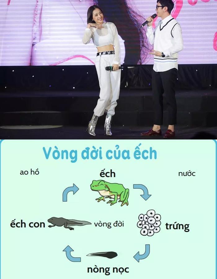 Dàn sao Việt lộ kiến thức tả tơi rơi rụng khi chơi gameshow-1