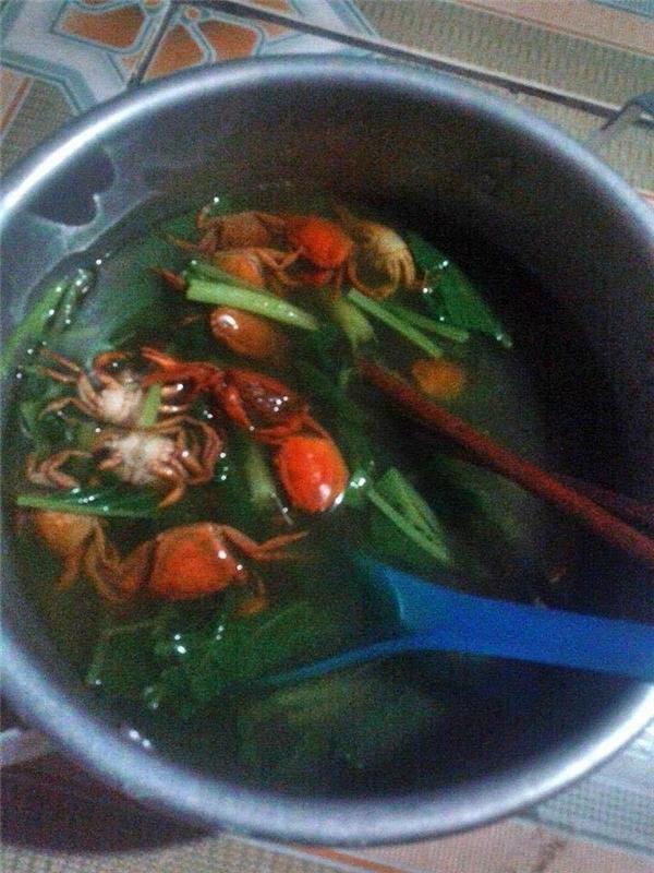 Ra mắt nhà bạn trai, nấu canh cà chua, cô gái khiến dân mạng hốt-2