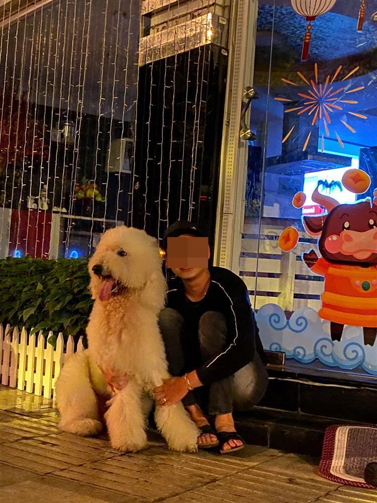 Mất con chó, Lý Quí Khánh đăng tin chỉ muốn chết-3