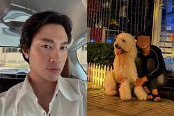 Mất con chó, Lý Quí Khánh đăng tin 'chỉ muốn chết'