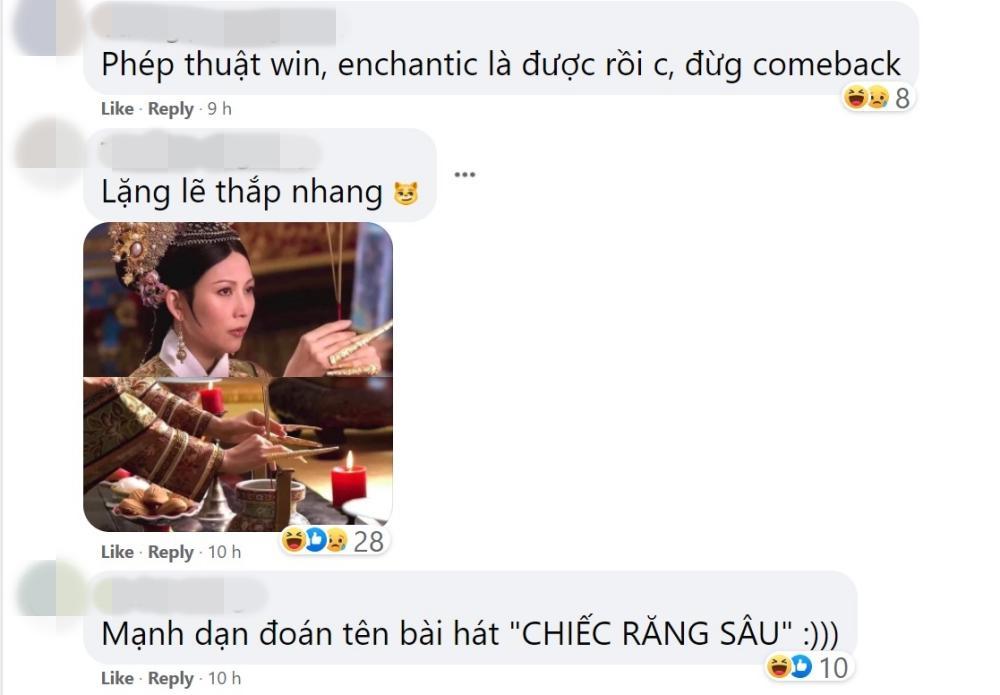 Phí Phương Anh thông báo comeback, netizen bàng hoàng: Lì như trâu-4