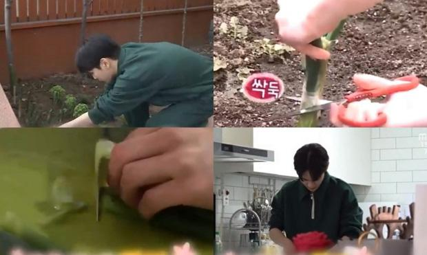 Key (SHINee) cực sốc khi thấy hình ảnh trồng hành của mình xuất hiện trên... bản tin thời sự-1