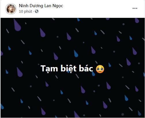Mẹ đẻ Chi Dân qua đời, Ninh Dương Lan Ngọc nói lời tạm biệt-2