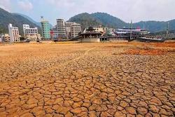 Hồ lớn nhất Đài Loan lộ đáy do hạn hán lịch sử