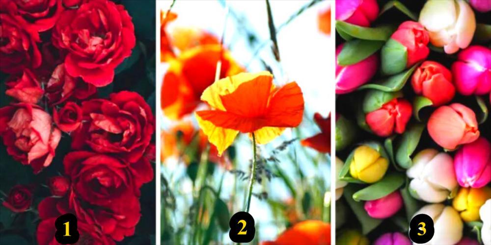 Chọn bông hoa yêu thích nhất khám phá bí mật thú vị về tính cách của bạn-1