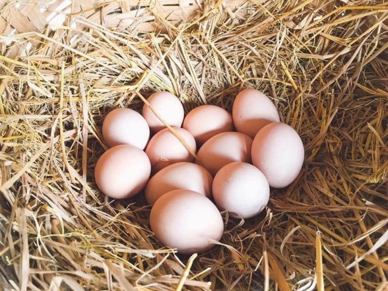 Cần từ bỏ ngay thói quen ăn trứng luộc kiểu này kẻo có ngày gây ngộ độc-1