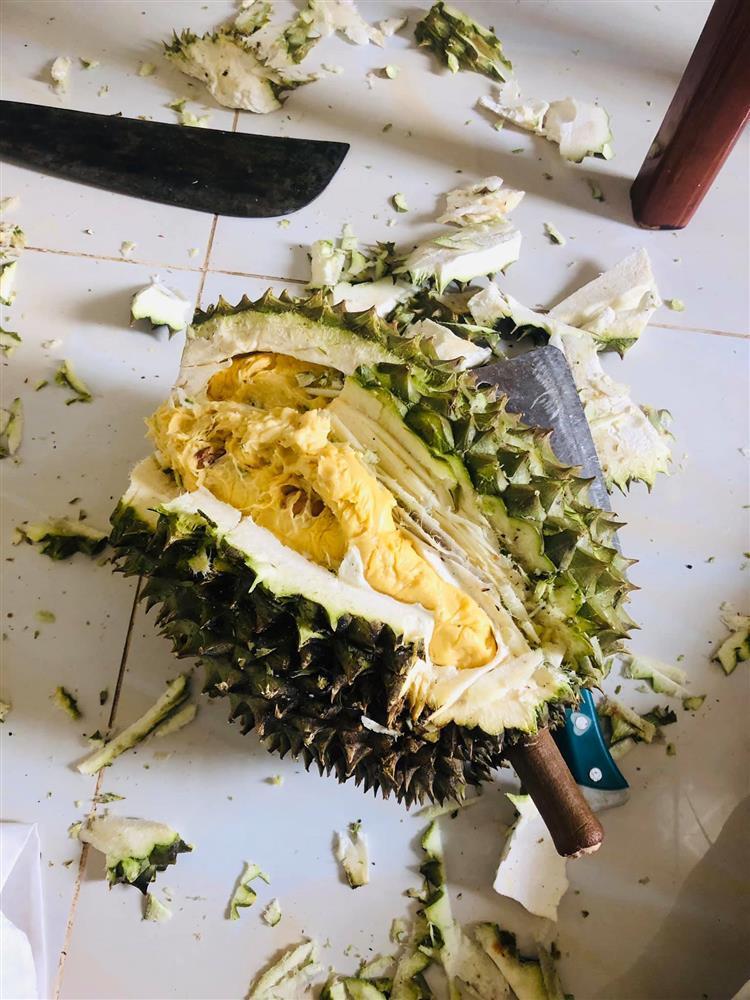 Bổ sầu riêng như đánh vật nhưng cái kết chỉ vứt đi chứ ai ăn nổi-1